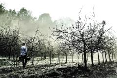 """Alfredo LOIDI UNZURRUNZAGA - """"Entre niebla"""""""